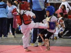 Taekwondo – Meeting Kids
