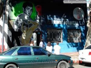 murales33